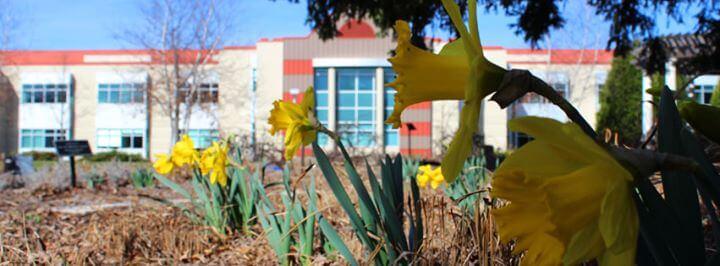 cardinal-stritch-university-nonprofit-special-education