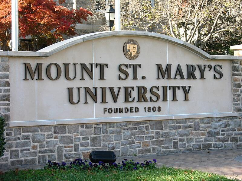 mount-st-marys-university-nonprofit-special-education